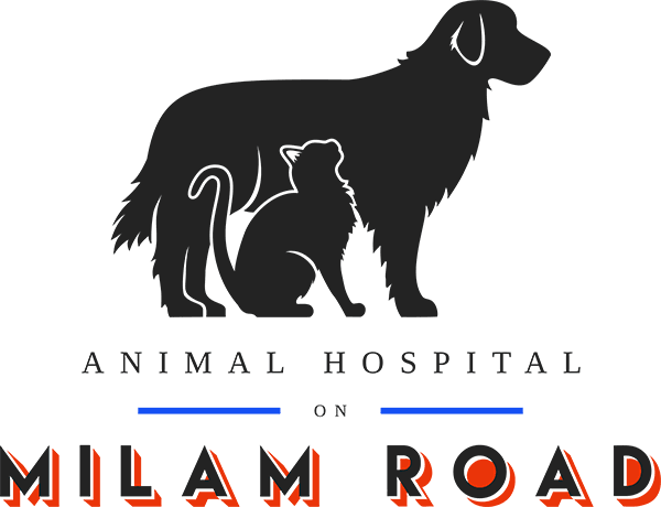 Animal Hospital On Milam Road